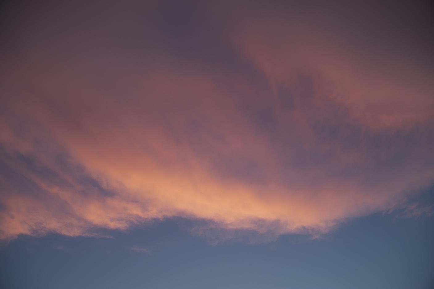 Aerial – seria fotografii z patrzenia w niebo, Wielkanoc 2019