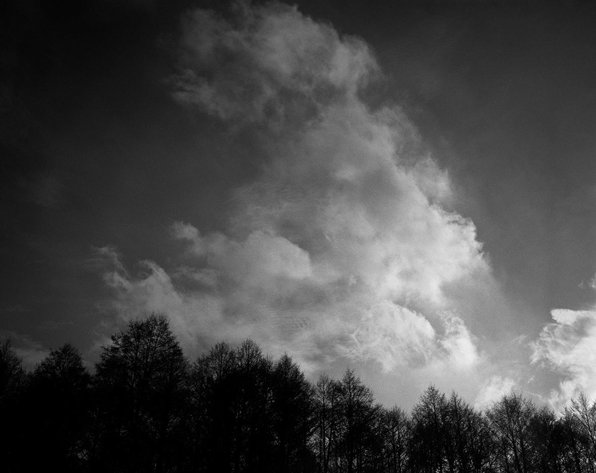 2013, Rezerwat Grzędy, Biebrzański Park Narodowy. Mamiya 7II & Sekor N 65/f4, Ilford FP4+, EI 200 ASA filtr Cokin P 002 Orange, fotografia tradycyjna, fotografia analogowa, plenery fotograficzne