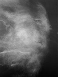Aerial, Mamiya 7II Sekor N 65/f4, ILFORD HP5+, D23 formula, fotografia tradycyjna fotografia analogowa, fotografia czarno-biała